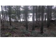 Real Estate Listing At Lot 12 Houston Road Lincoln, Maine