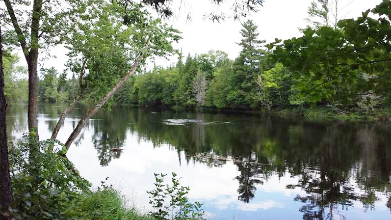 Real Estate Listing At Lot 1.2 Danforth Road Haynesville, Maine