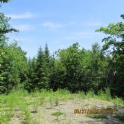 Real Estate Listing At Forest City Road Forest City, Maine