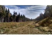 Real Estate Listing At Lot 11 Wrightville Road Ashland, Maine