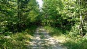 Real Estate Listing At Lot 4 Williams Rd Amity, Maine