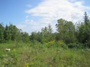 Real Estate Listing At 600 Drews Mill Road Linneus, Maine